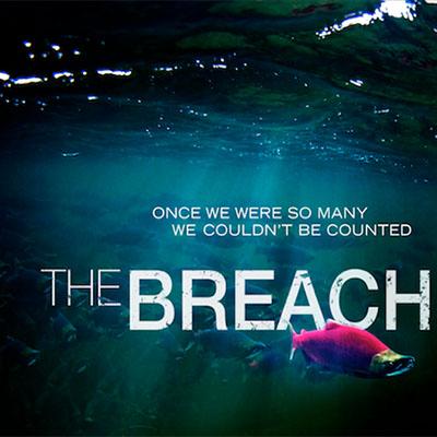 breach2.jpg
