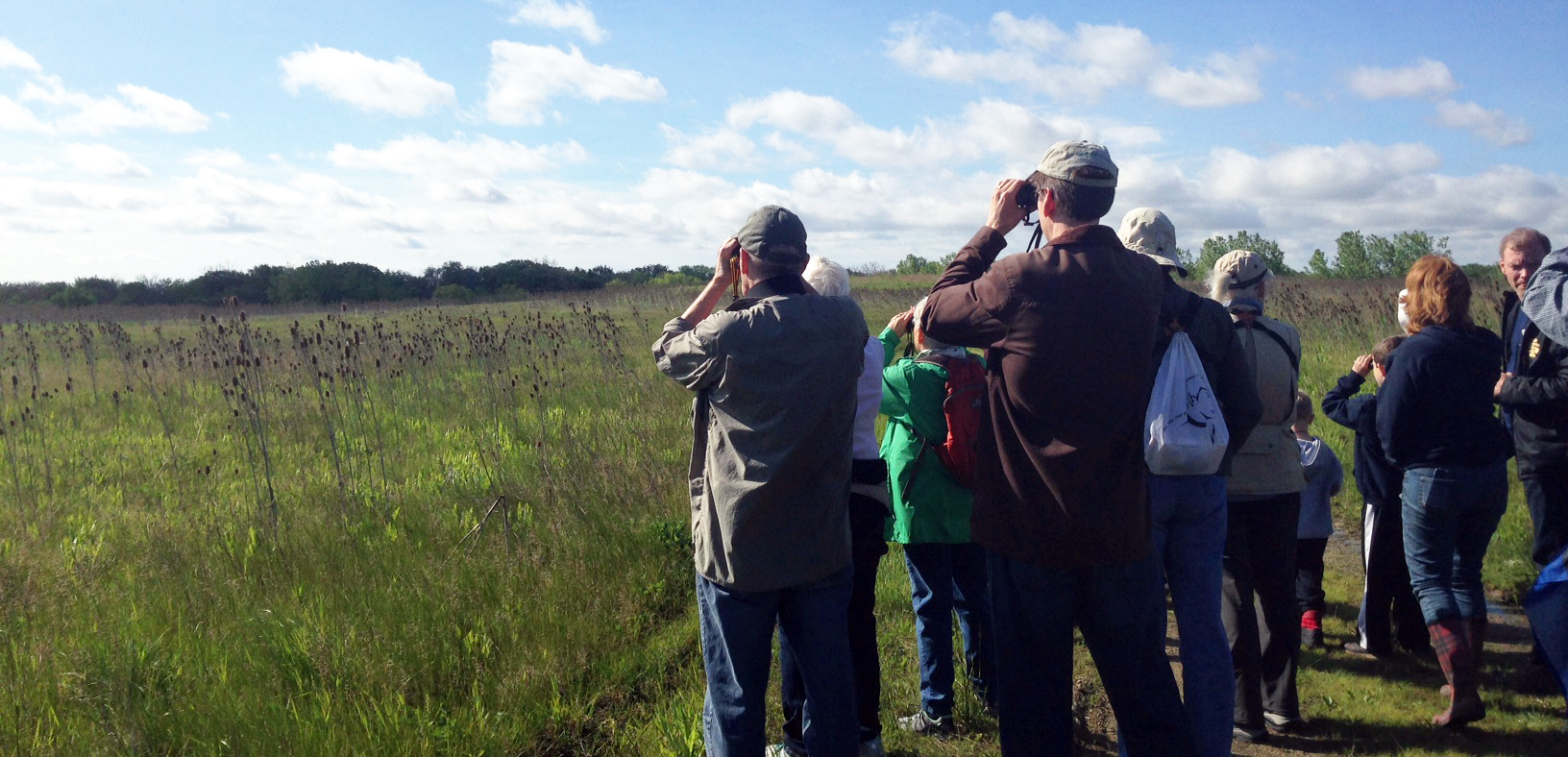 Birders watch a Meadowlark flit and flutter among the wildflowers.