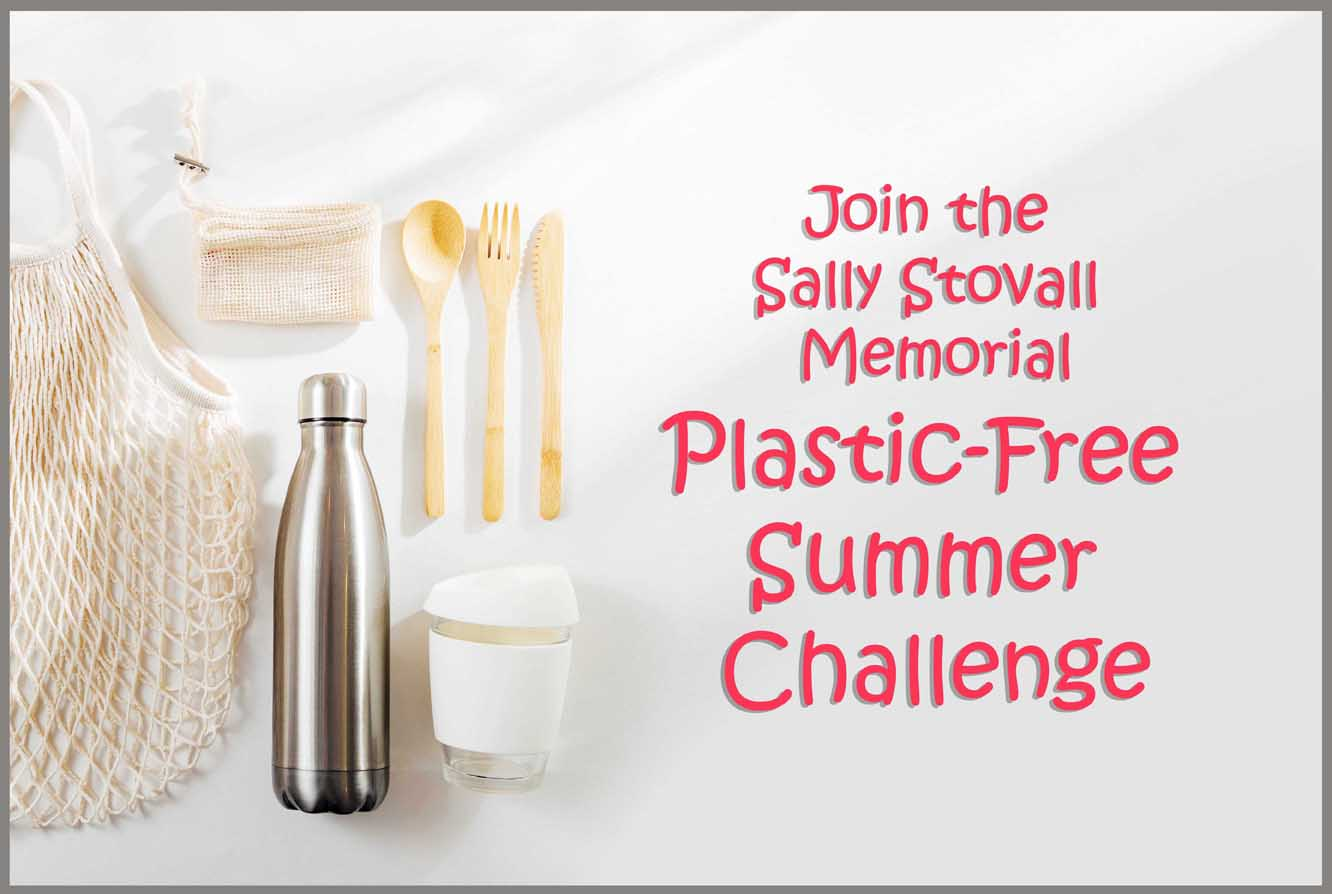 Plasti-free summer challenge poster with resusable cups, bags, and silverware.