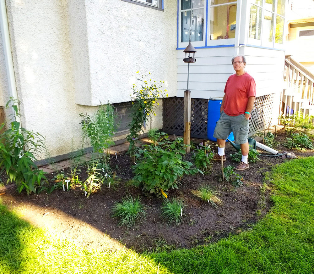The Gill/Petkovsek family backyard bird garden is expanding, thanks to native trees, shrubs, and plants from local biannual sales sponsored by West Cook Wild Ones, among other non-profits.