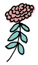 Jeanette-Zeis-sm-pink-flower.png