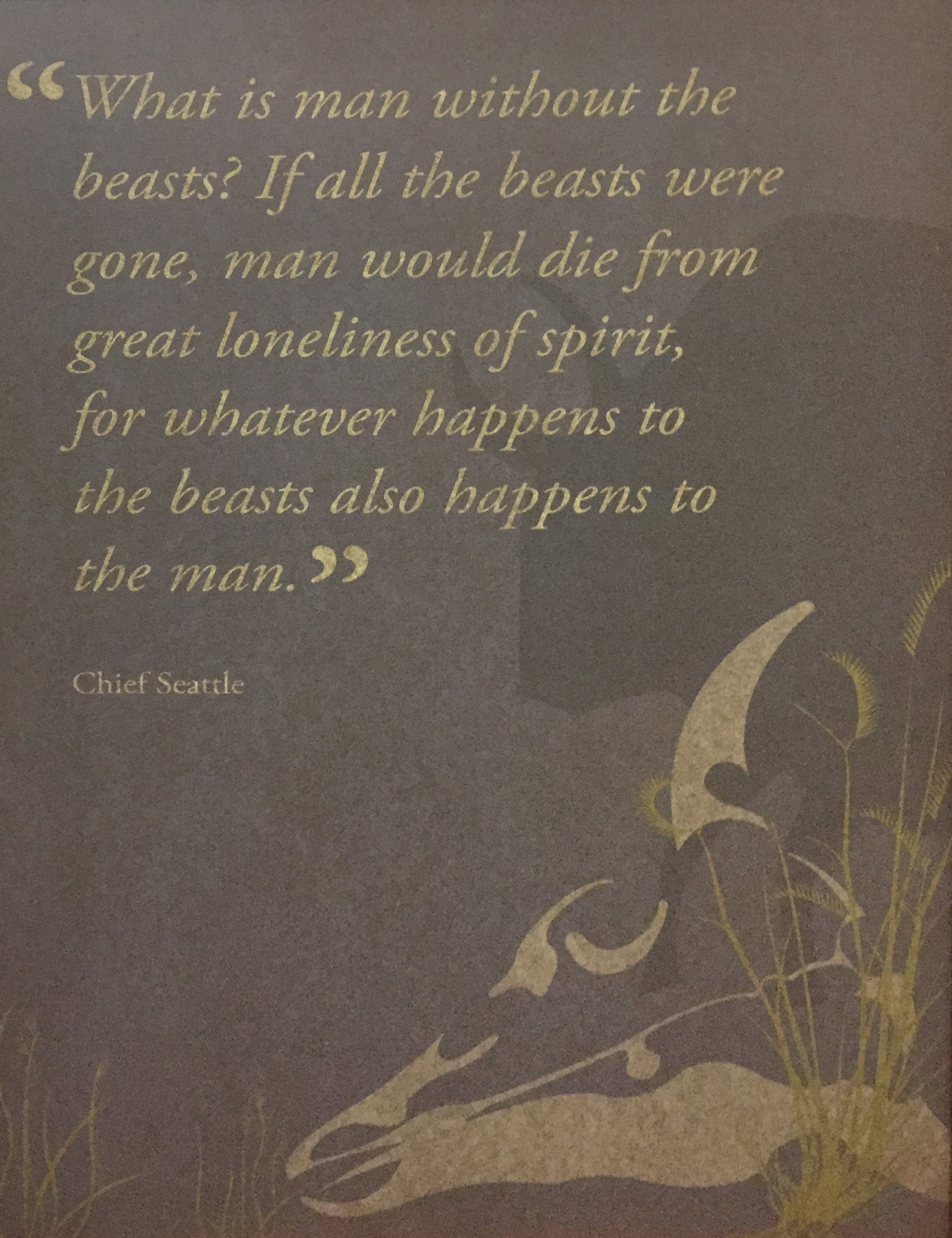 2018-04-28 Bison quote.jpg