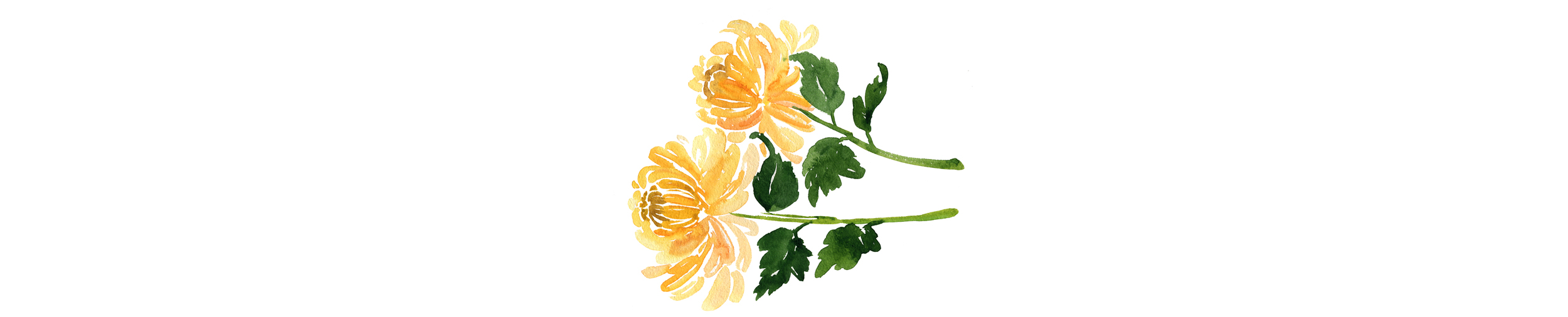 Yellow-Flowers.jpg