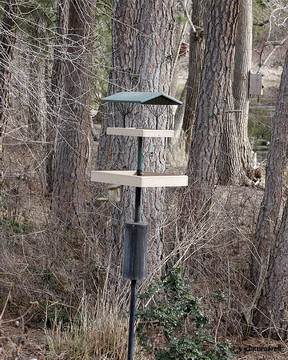 Two trays stacked atop one pole. These systems attract Finches, Nuthatches, Hairy and Downy Woodpeckers, Northern Flickers, Pileated Woodpeckers, three varieties of Nuthatches and two types of Chickadees.