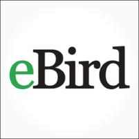 ebird-logo.png