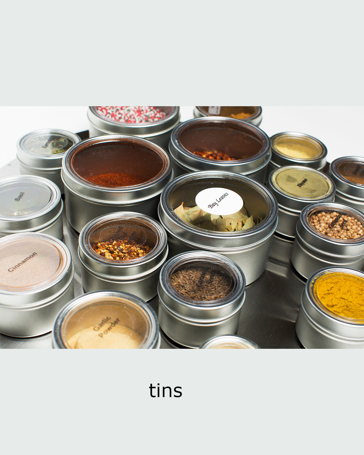 Neutral-Center-TINS3-COLOr.jpg