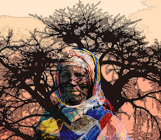 african tree proverb.jpg