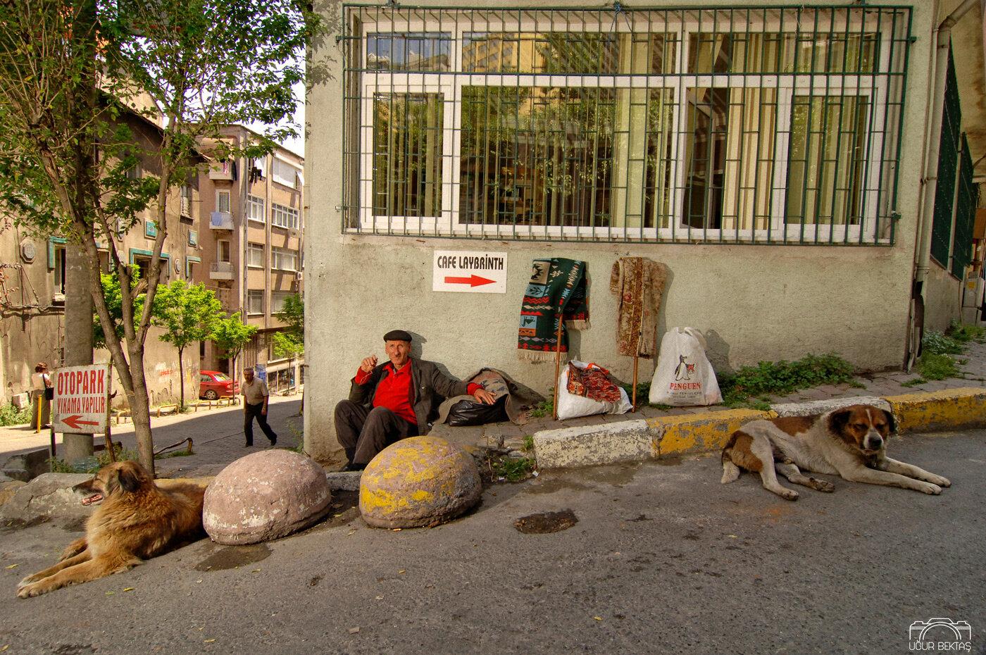 Kopekli_Hali_Saticisi_Cihangir_istanbul.jpg
