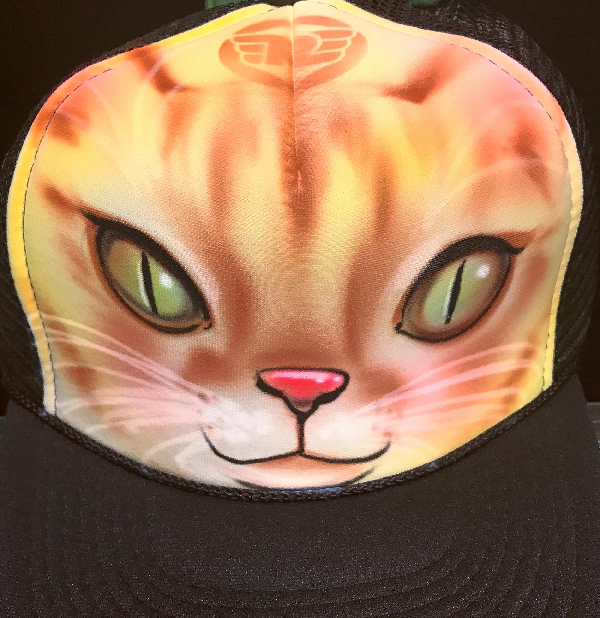 Custom airbrushed trucker hat Cat face