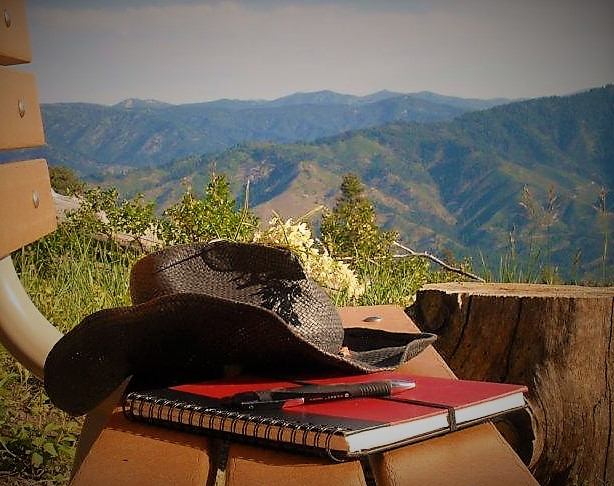 danielle-richardson-Idaho-hat-notepad.jpg