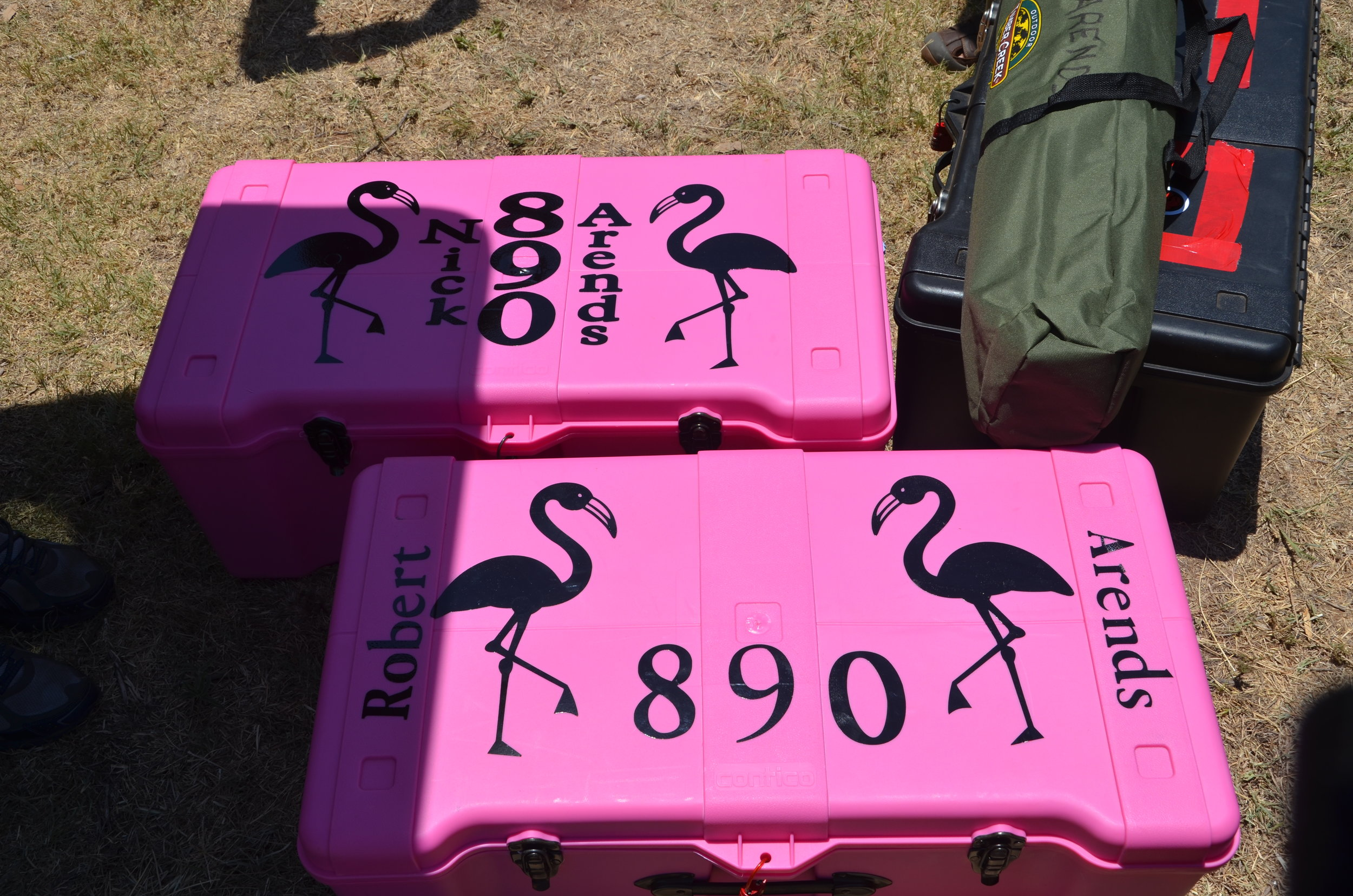- We camp. With flamingos.