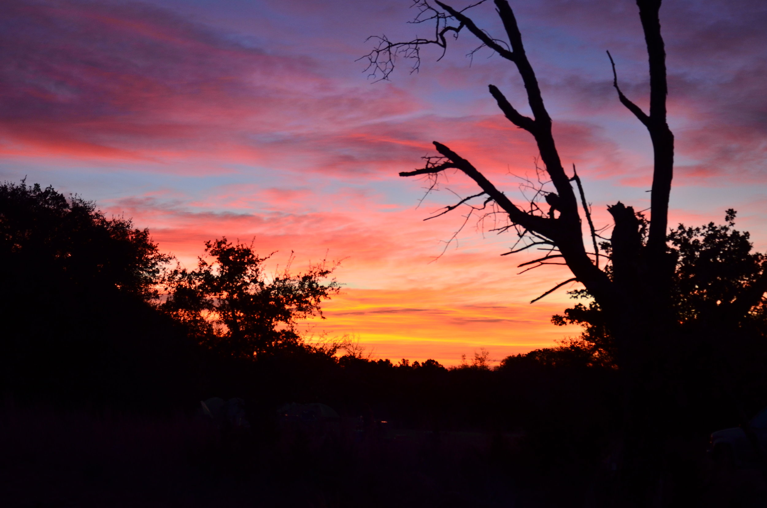 Sunset at WG.jpg