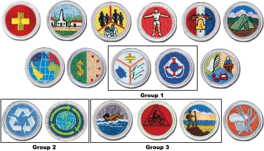 These are the 13 Eagle required merit badges. You must earn one in each of Groups 1-3.