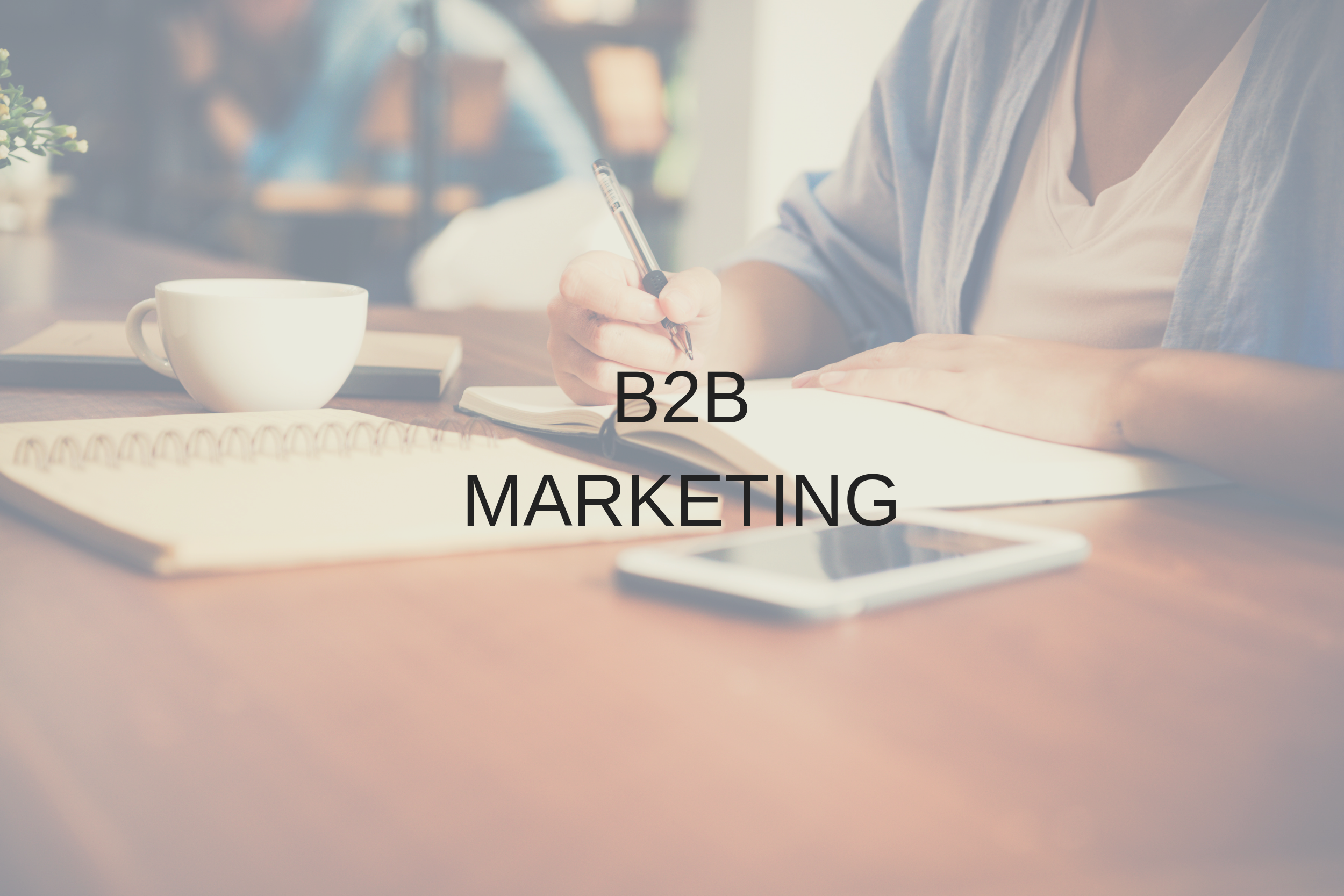 B2B marketing pic.png