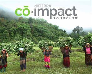 co-impact-sourcing-nepal-wintergreen_page_1-e1523270136485.jpg