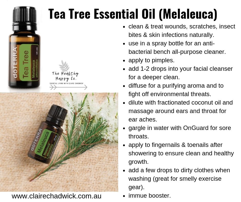 All About Tea Tree Essential Oil.jpg