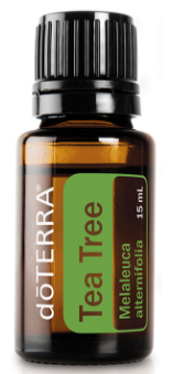 TEA TREE:   - Apply to insect bites, scratches, cuts, wounds for it's antibacterial and cleansing properties.   - dilute 1 drop with a carrier oil and massage into throat, neck and around (but not inside) ears for sore throats and ear aches.   - use to clean surfaces, toilets, toys etc.   - a couple of drops into the dirty washing load to make the clothes/sheets/towels smell good but to kill off germs and bacteria (milky spew odours, sweaty sports clothes etc)