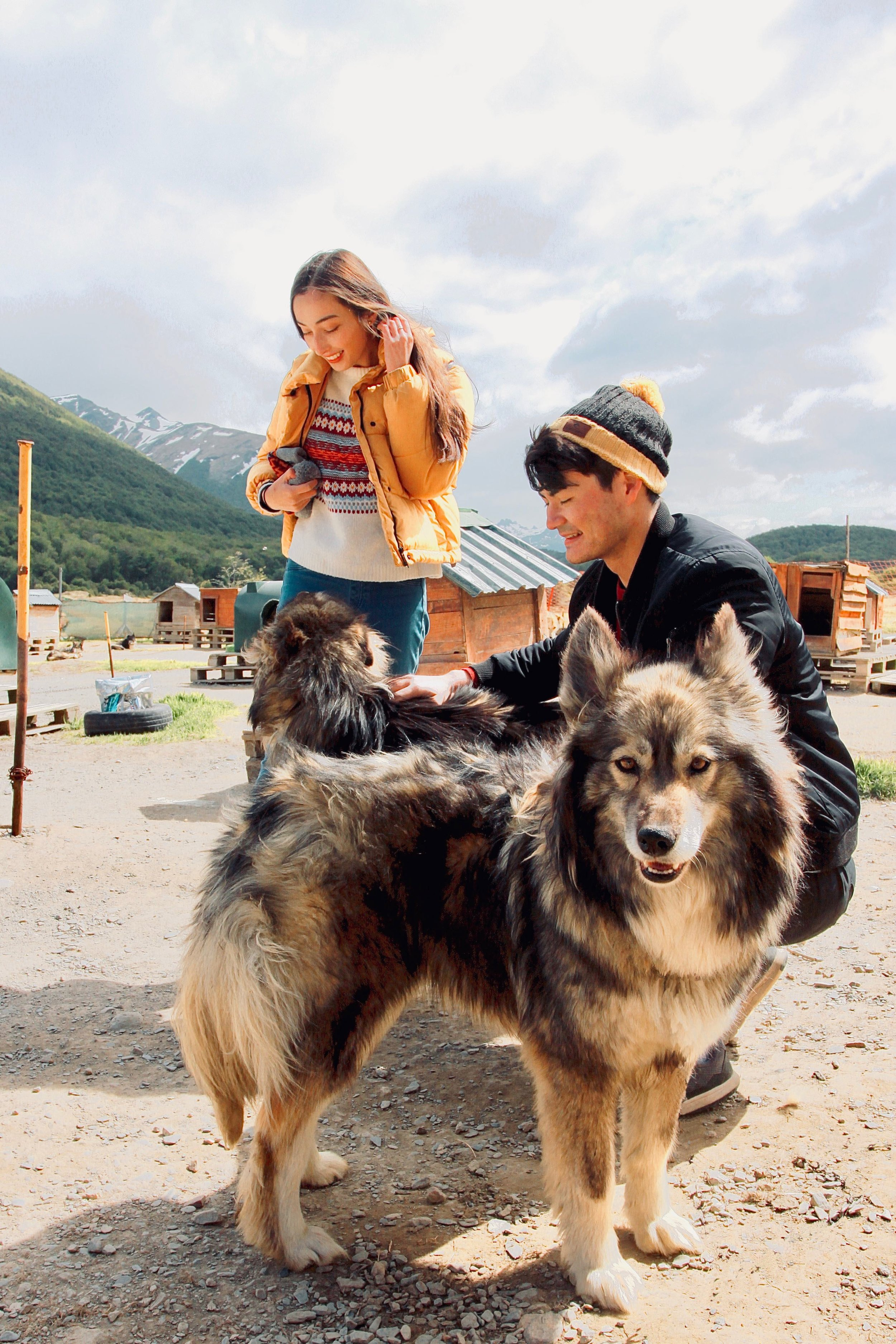 Travellers with Siberian huskies in Ushuaia