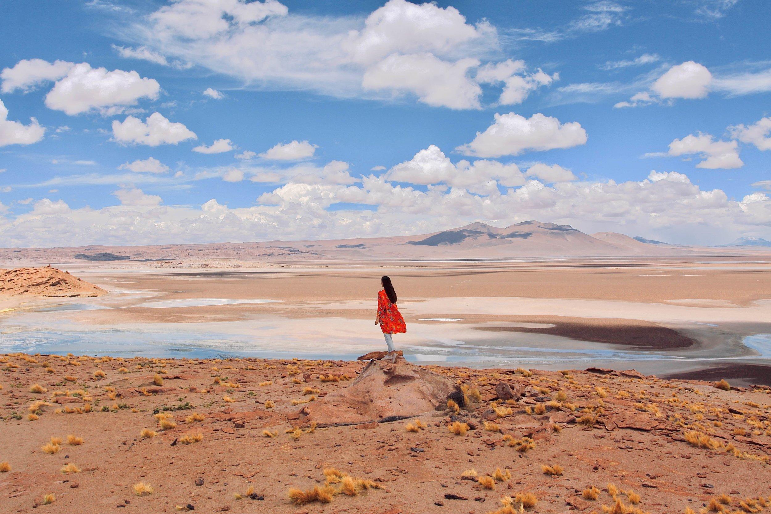 Laguna Kepiaco, Atacama Desert Chile