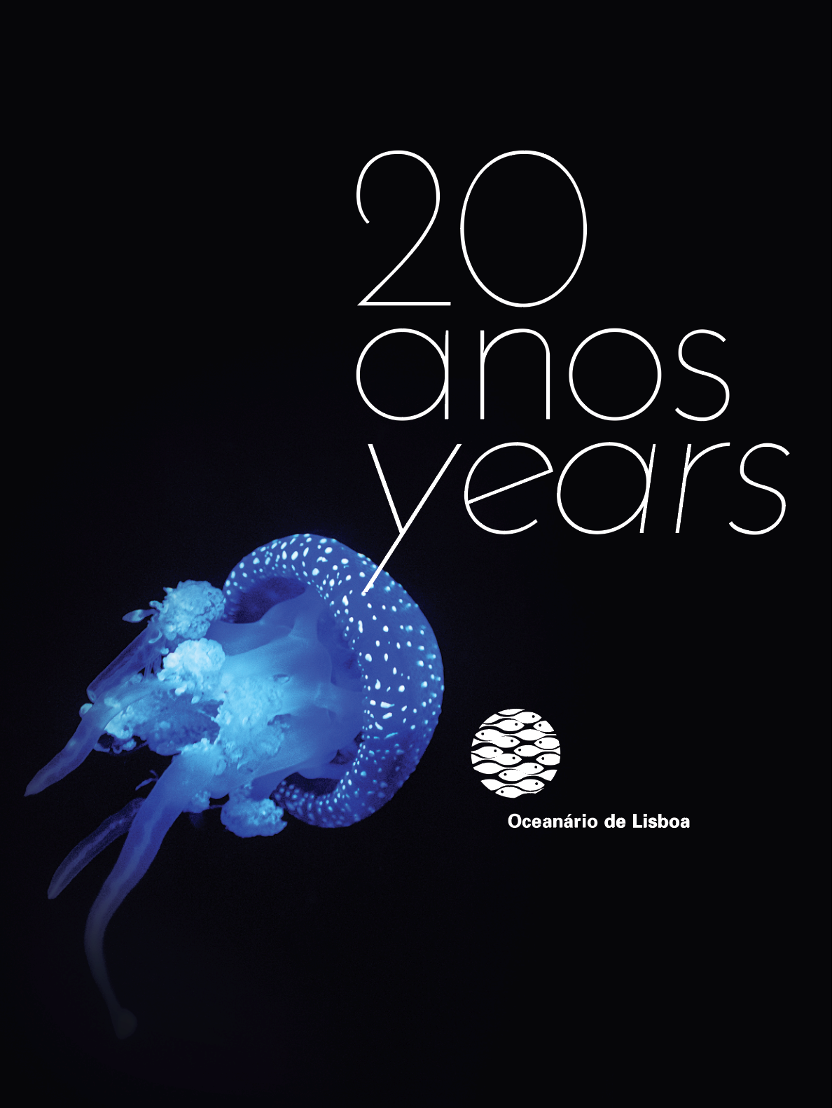 Capa Livro 20 anos (002).png