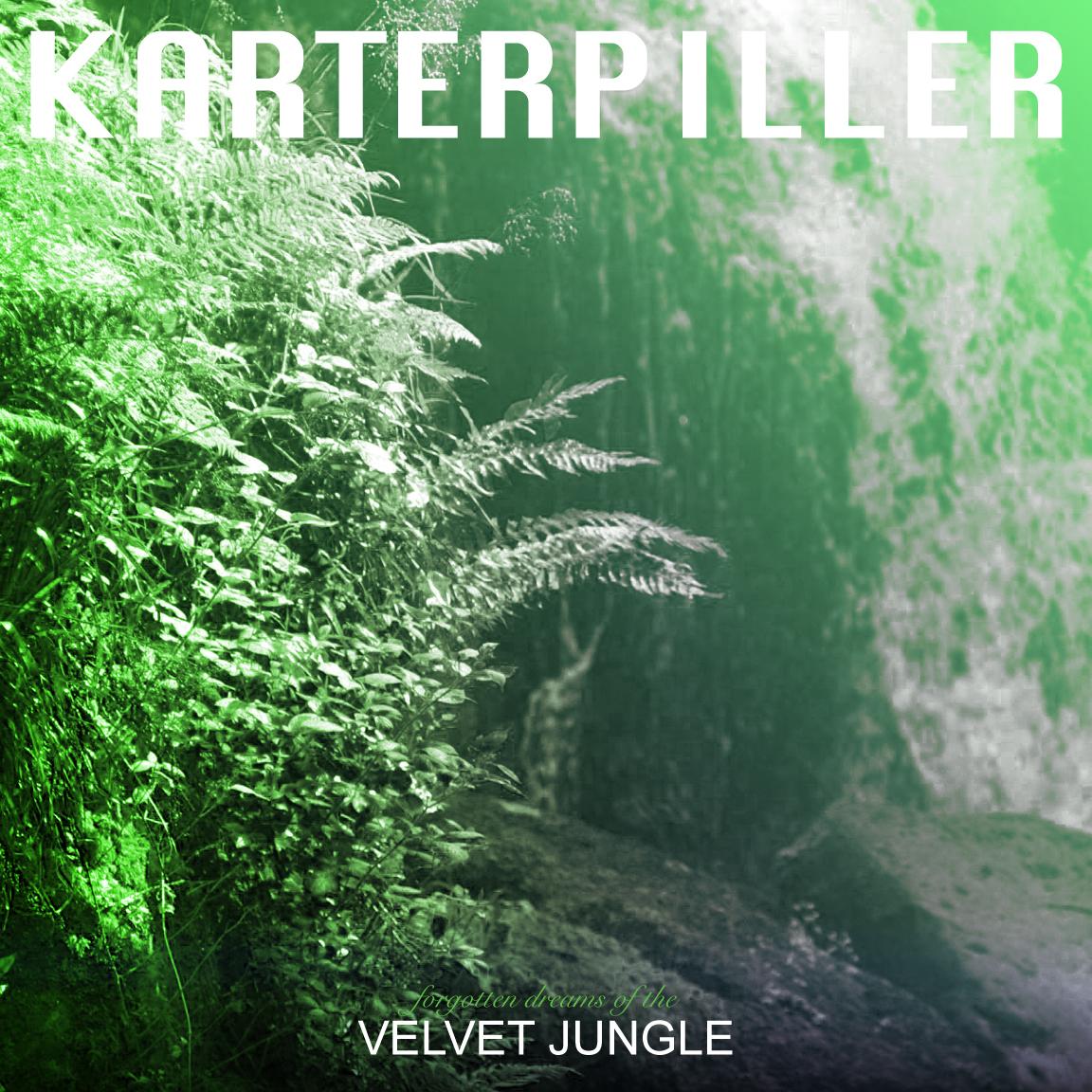 Forgotten Dreams of the velvet Jungle4.jpg