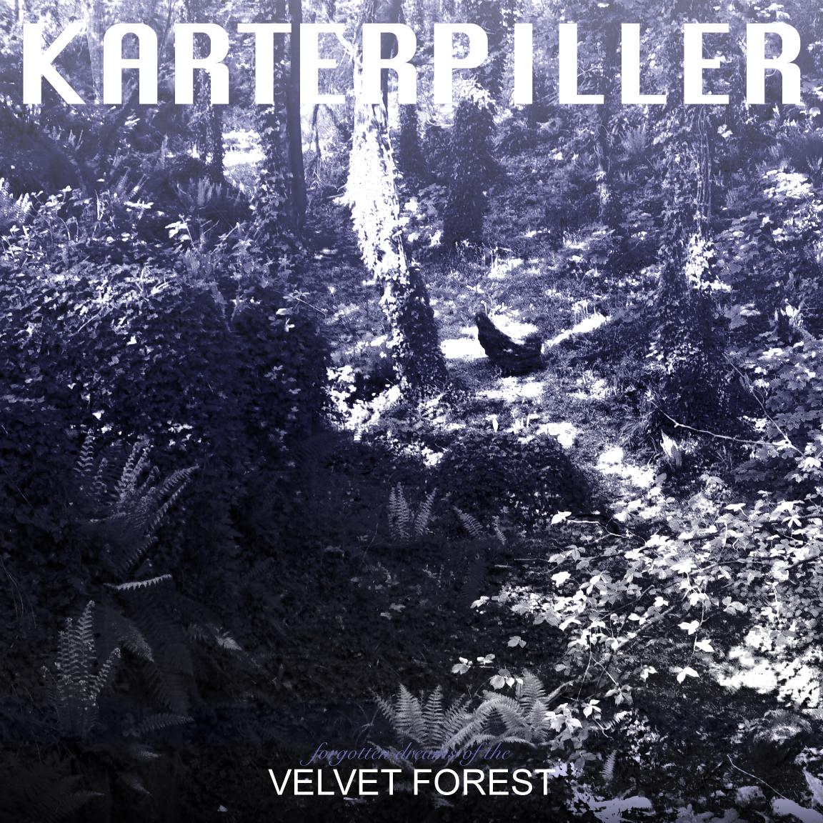 Forgotten Dreams of the velvet forest4.jpg