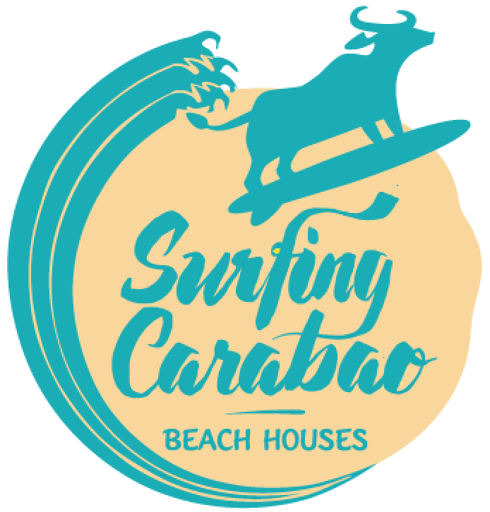 Small logo  surfing carabao.png