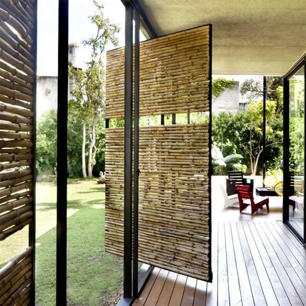 ….Cañas de bambú..Bamboo canes….
