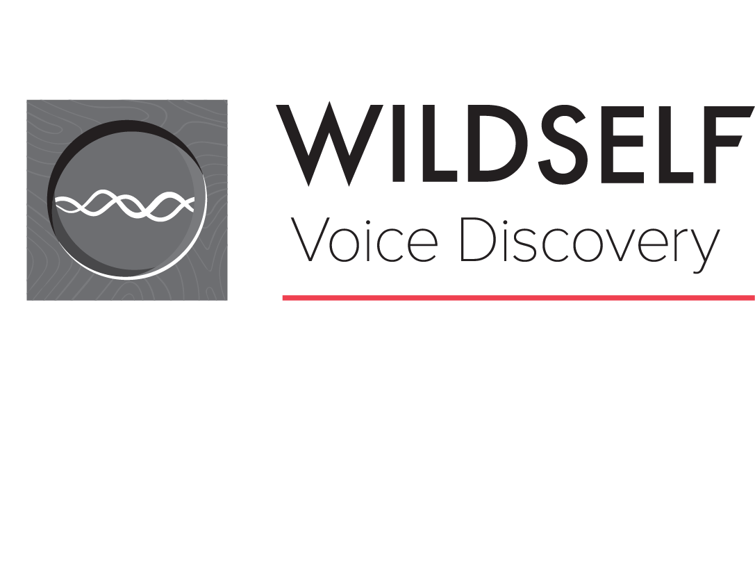 Voice Discovery RGB.png