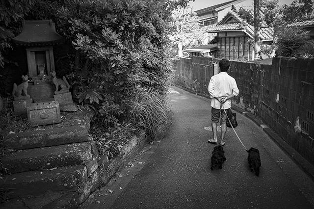 Kamakura. 鎌倉。  #鎌倉 #鎌倉さんぽ #鎌倉生活 #さんぽ #平和 #お稲荷さん #神社巡り #モノクローム写真 #モノクローム #モノクロ写真 #ストリートスナップ #写真家 #写真すきな人と繋がりたい #kamakura #kamakurajapan #oinarisan #jinja #shintoshrine #monochromestyle #fujifilm #walkingthedog #bjørnehoff #norskefotografer #norskefototalenter #norgesfotografer #livinginjapan