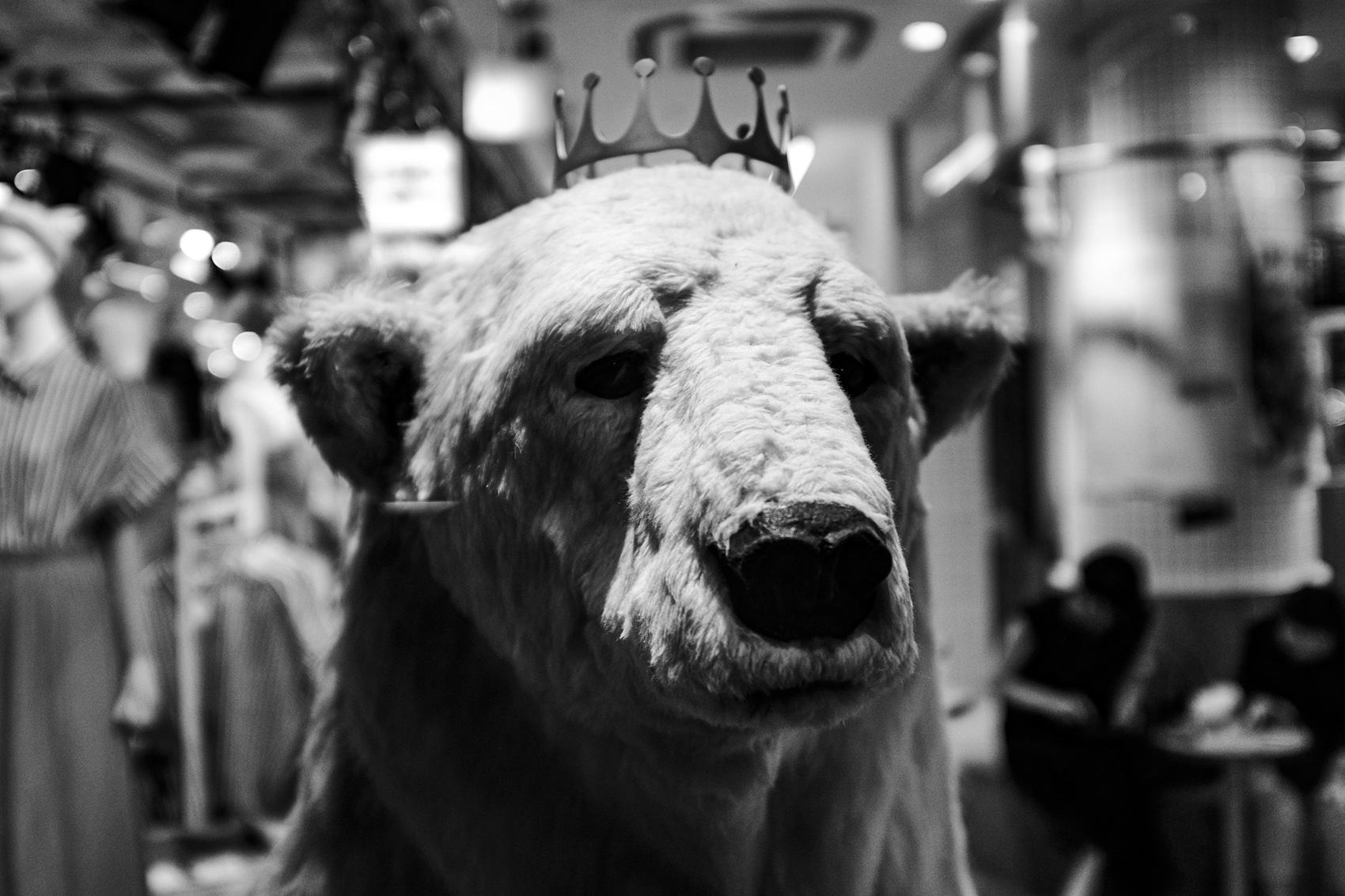 熊の王Kvitebjørn Kong Valemon