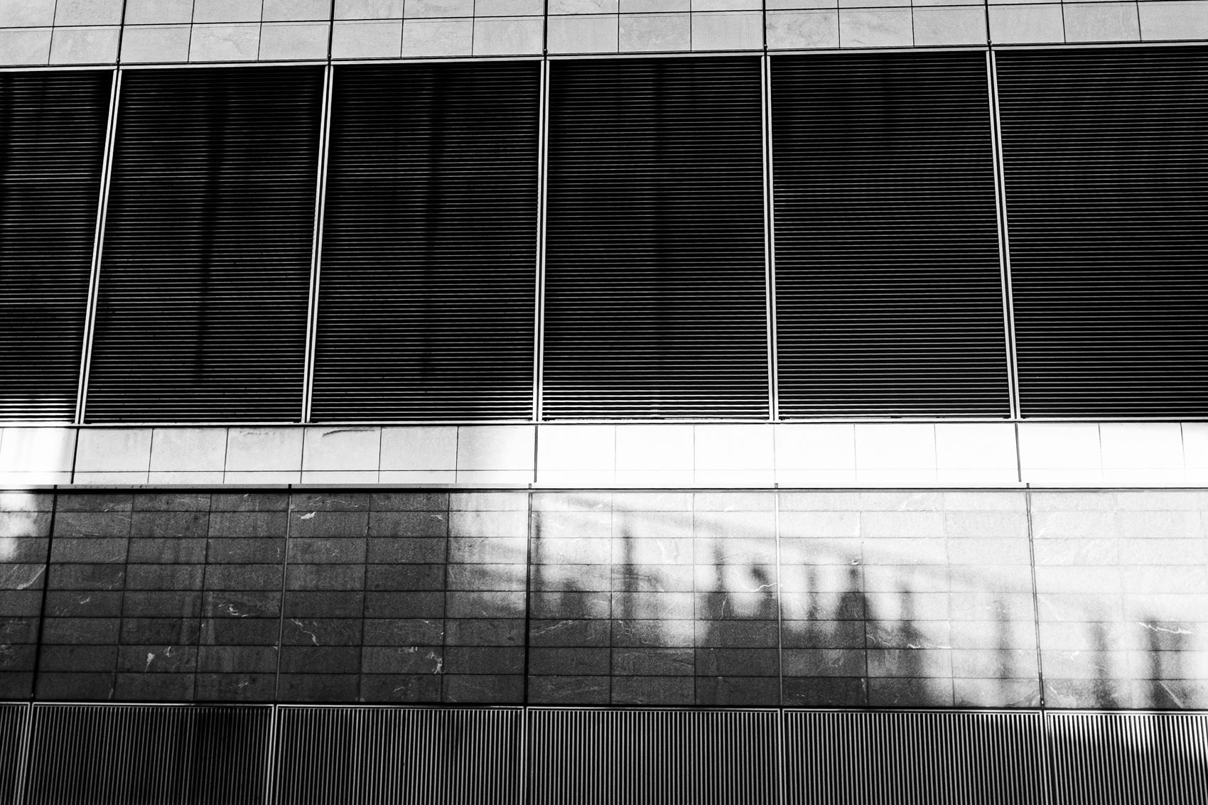 影Shadow