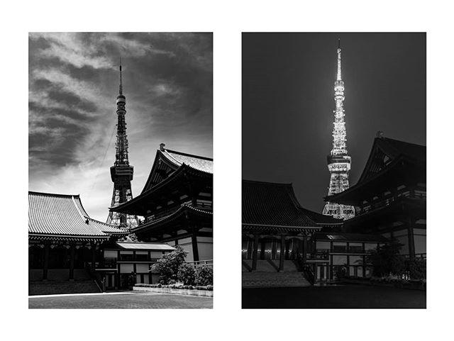 増上寺、芝公公園。 Zoujouji, Shibakoen. I walk past frequently on my way to work. #増上寺 #芝公園 #東京タワー #東京タワー🗼 #東京生活 #下町 #ストリートスナップ #ストリートスナップ東京 #モノクローム写真 #モノクローム #モノクロ写真 #美夜寝 #写真家 #tokyotower #zojoji #shibakoen #tokyolife #tokyostreet #tokyostreetphotography #norskefotografer #norgesfotografer #shitamachi #monochromestyle