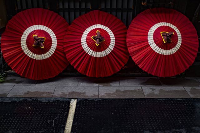 和傘、先斗町。 Lacquered umbrellas, Pontochou. #先斗町 #京都ぶらり #京都旅行 #赤 #和傘 #京 #みやこ #美夜寝 #ホームシック #写真家 #カラフル #夏の京都 #Kyotolife #wagasa #laquerware #paperumbrella #Bjørne #norskefotografer #miyako #norgesfotografer #lackoffocus