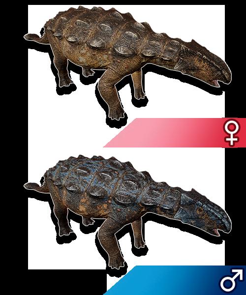 Sandbox Dino | Aesexual Nester