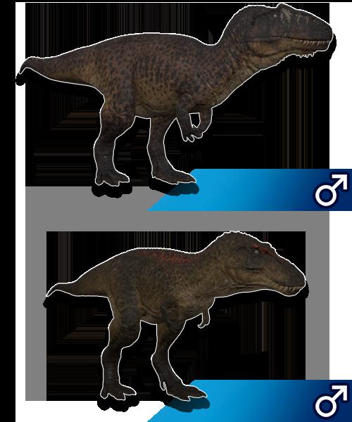 Survival Dino | Custom Skins