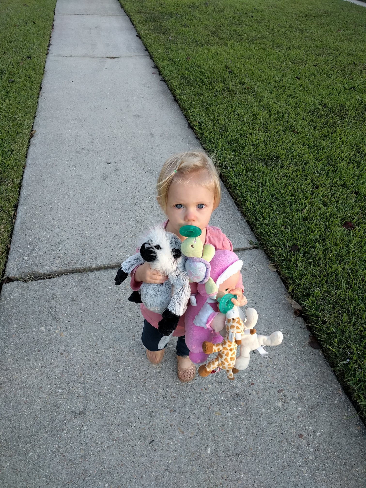 Oh, you know, just taking a walk with my mom and my five favorite stuffed animals.