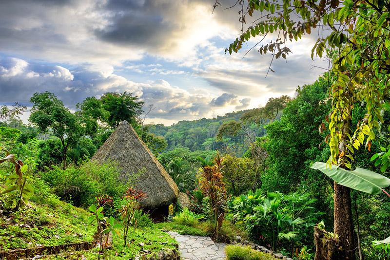 retreat-costa-rica-lunalodge-1.jpg