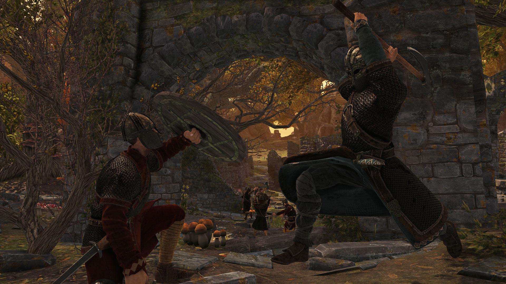 War of the Vikings -
