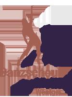 Danzschoul Logo.png