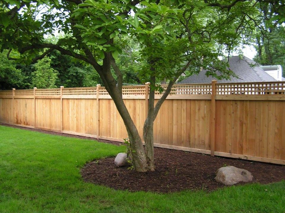 wood fence .jpg