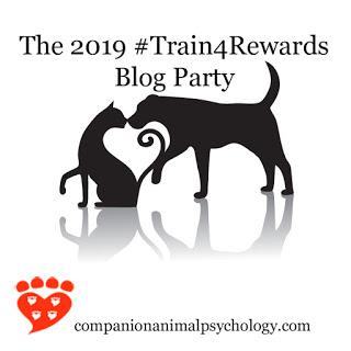2019-train-for-rewards-b.jpg