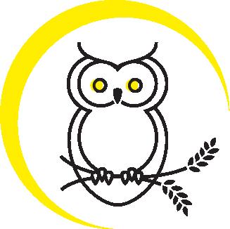 NOB-owl.png