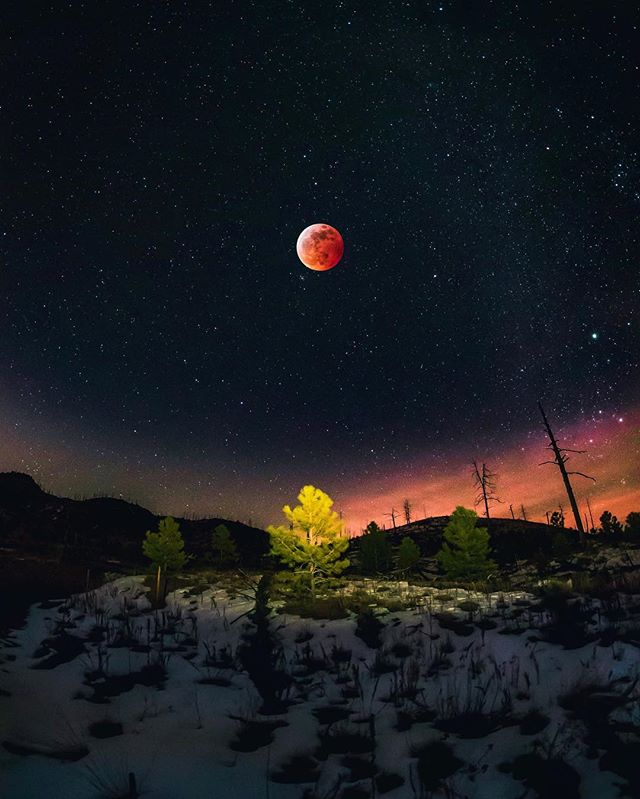 Here is my take on the blood moon. I went out shooting with a couple buddies that night, searching for the perfect place. We ended up by Cheeseman Lake, freezing our asses off late at night. But man it was glorious. Nothing better than having a camera in your hand, wandering around the wilderness trying to find a good shot😎 And this shot is not photoshopped at all I swear😉🤷🏻‍♂️ | Cheeseman Lake, Colorado | January 2019 |