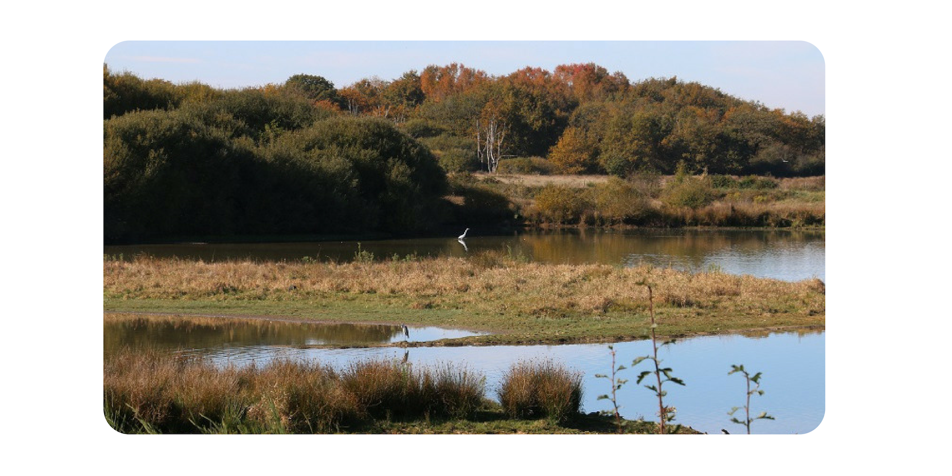 Nature experiences, bird watching, walks, fishing… - Available in French or English