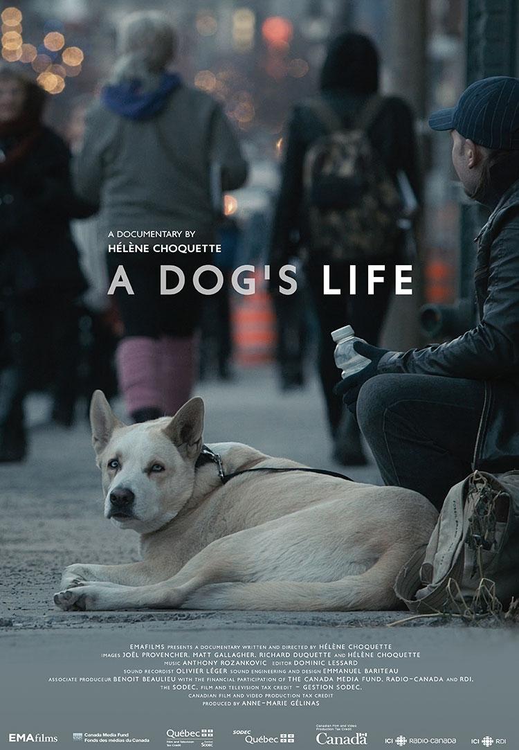 A Dog's Life - Poster ENG.jpg
