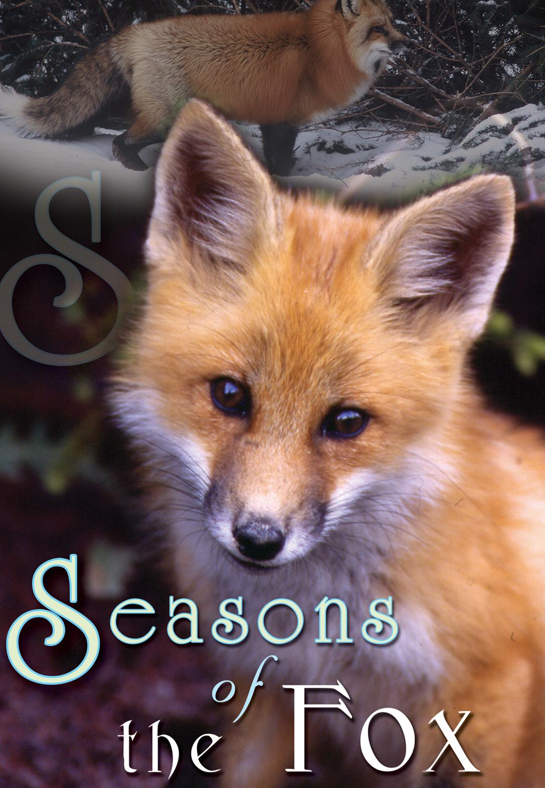 Seasons of the Fox