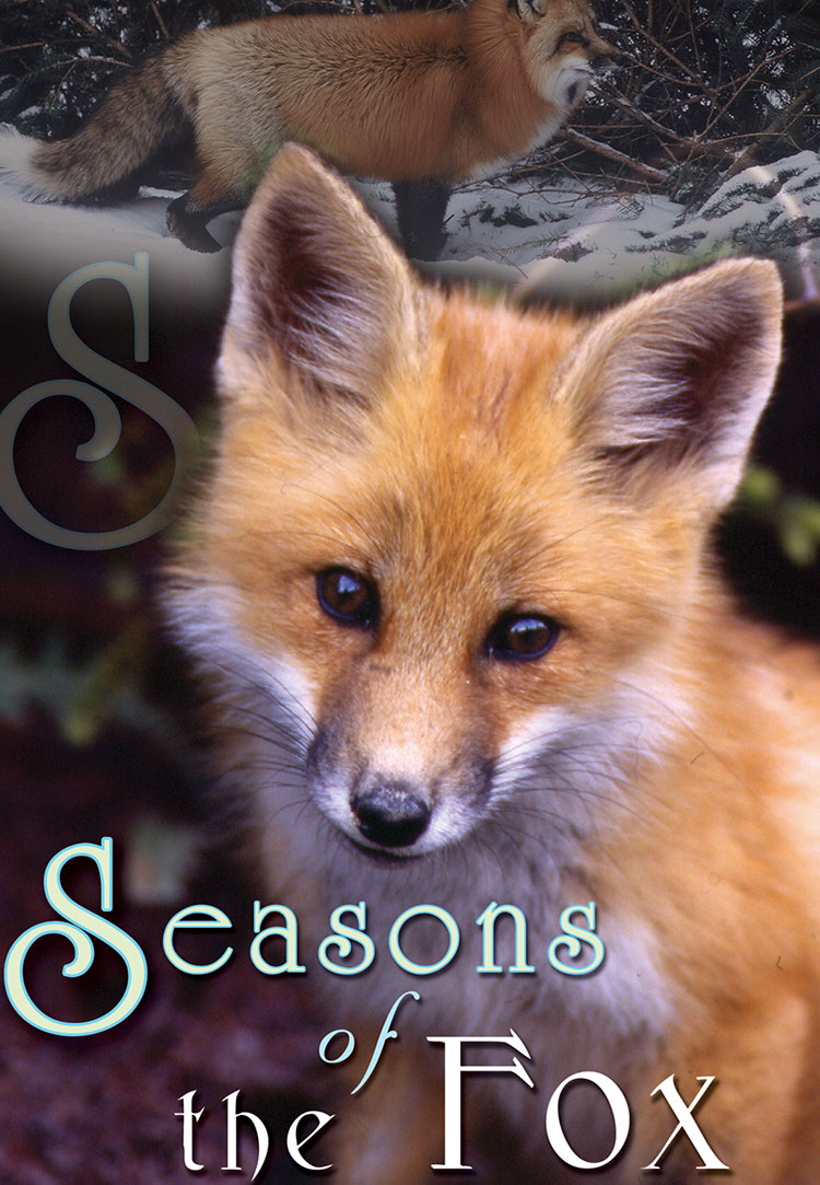 Seasons of the Fox - Poster.jpg