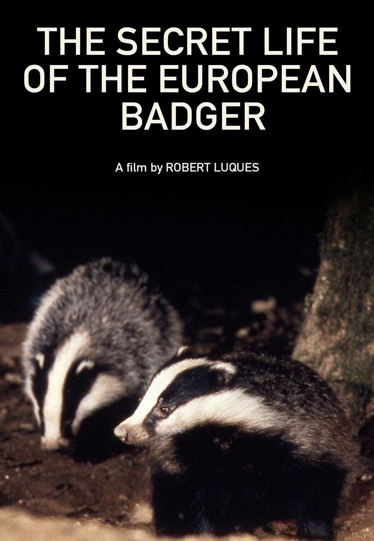 The Secret Life of the European Badger