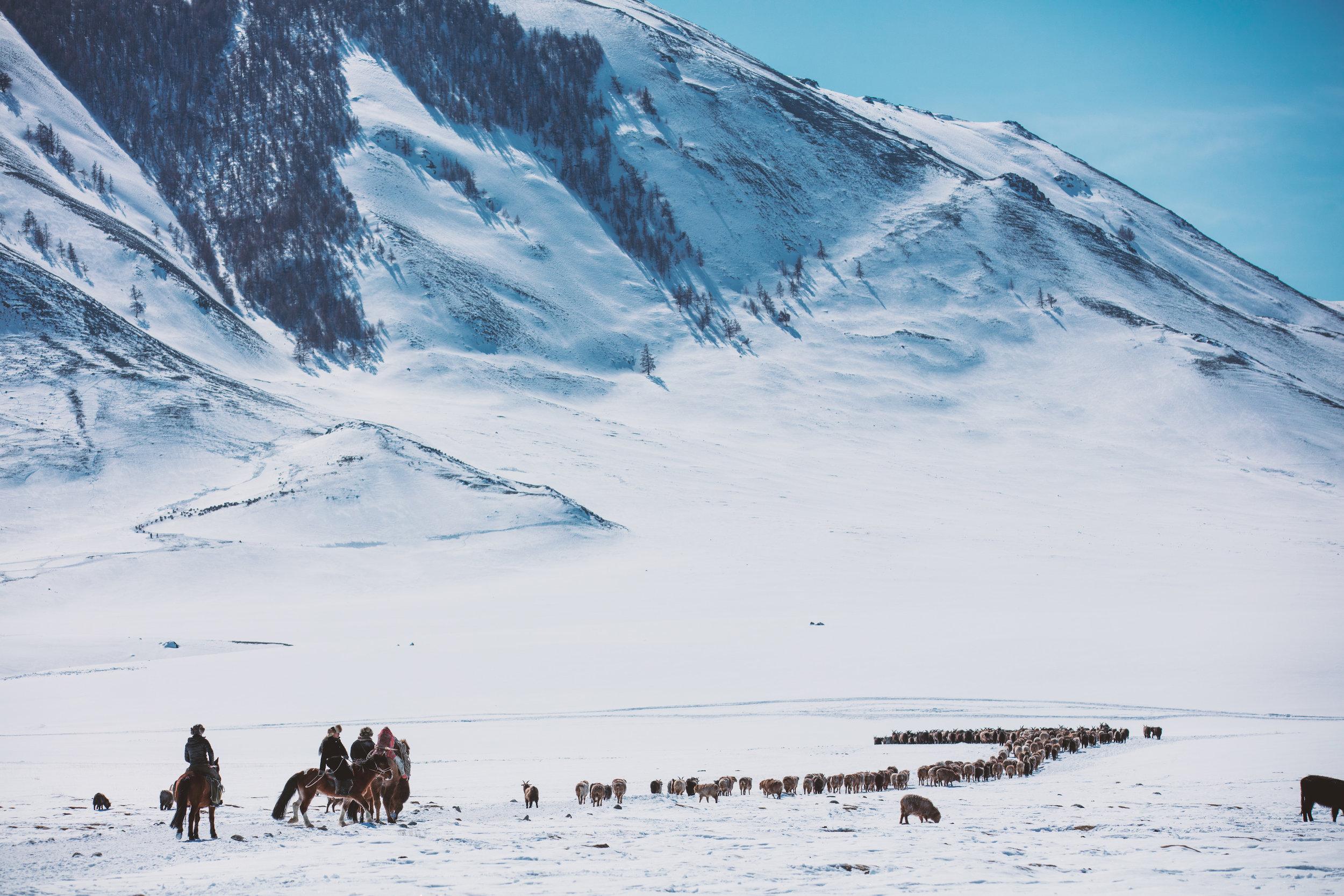 Kazakh nomads on the winter migration,Altai Mountains, Western Mongolia_Boy_Nomad_aAron_Munson.jpg